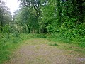 Footpath, Top Carpark, Colby Lodge - National Trust Gardens - geograph.org.uk - 1370039.jpg