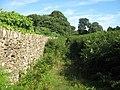Footpath along the stone wall - geograph.org.uk - 1451429.jpg