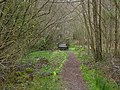 Footpath in RSPB Ynyshir reserve - geograph.org.uk - 1219432.jpg