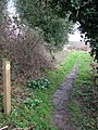 Footpath marker - geograph.org.uk - 1190926.jpg