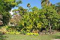 FortPierce-botanicalGarden.jpg