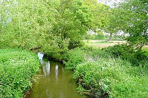 Foudry Brook - Viewed from Missels Bridge, near Beech Hill, Berkshire