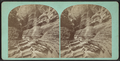 Frowning Cliff, Freer's Glen. Schuyler Co. N. Y., from Robert N. Dennis collection of stereoscopic views.png