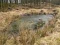 Frozen pond, Pitmedden Forest - geograph.org.uk - 120453.jpg