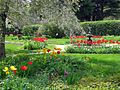 Garden at Glen Magna Farms.jpg