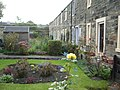 Gardens in Shaw's Place - geograph.org.uk - 1537545.jpg