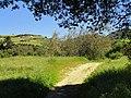 Garland Ranch Regional Park - Carmel Valley, CA - DSC06908.JPG