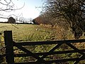 Gate, sheep and field - geograph.org.uk - 621746.jpg