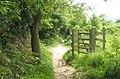 Gate within Warren Copse - geograph.org.uk - 1325109.jpg
