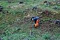Geofysisk arkeologi (3968732360).jpg