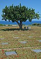 German military cemetery in Maleme, Crete. Greece.jpg