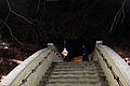 Gfp-texas-san-antonio-night-time-bridge.jpg