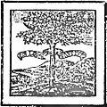 Gioda - Il baco da seta,1926 (page 9 crop).jpg