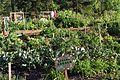 Giving Garden (16588856918).jpg
