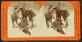 Glory enough for one day, from Robert N. Dennis collection of stereoscopic views 5.png