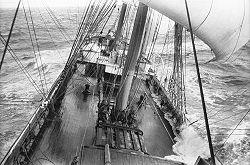 Grain De Sail Torrefacteur Caf Ef Bf Bd