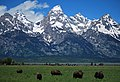 Grand Teton N.P. - panoramio.jpg