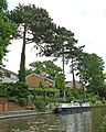 Grand Union Canal - geograph.org.uk - 481540.jpg