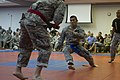 Grappling for victory DVIDS629417.jpg