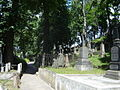 Graves in Vilnius Rasos cemetery 2.jpg