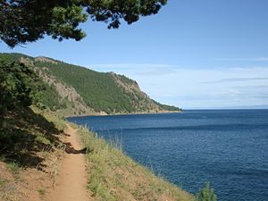 Great Baikal Trail near Bolshie Koty in July 2009.JPG