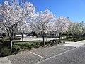 Gresham, Oregon (2021) - 103.jpg
