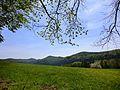 Große Dossau - panoramio.jpg