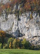 Grottenburg Balm