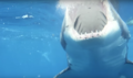 Guadalupe Island Great White Shark Mouth Open.png