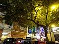 HK Wan Chai 莊士敦道 Johnston Road night Thomson Road Hennessy Road GPS School tree June 2016 Parking sign.jpg