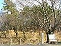 Hachimanyama kofun-Aichi01.jpg
