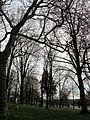 Hadden Park (7058836471).jpg