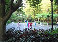 Haikou People's Park - people practicing t'ai chi ch'uan (tai chi) - 03.jpg