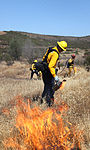 Heat is on for air station wildfire prevention and training 130515-M-OB827-043.jpg