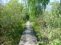 Hedeland - Wooden bridge 02.JPG