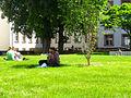 Heidelberg University inner courtyard IMG 1532.jpg