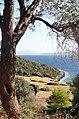 Hellenic summer.jpg
