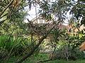 Hermitage, Pasadena, CA 02.JPG