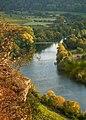 Hessigheim - Felsengärten - Wildrose über dem Abgrund.jpg