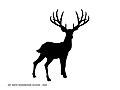 Het Grote Bosgebeuren logo..jpg