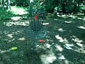 Hickory Run Disc Golfing (900178506).jpg