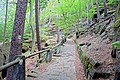 Hiking trail above the village of Hřensko 02.jpg