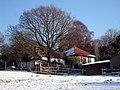 Hillside Cottage, Telham Lane - geograph.org.uk - 1626074.jpg
