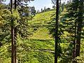 Hillsides surrounding Sharda.jpg