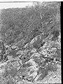 Hindmarsh Valley at Victor Harbor(GN09102).jpg