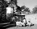 Historic re-enactor feeds animals at Mount Vernon, George Washington's estate in Virginia LCCN2011635211.tif