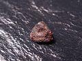 Holbrook meteorite, individual.jpg