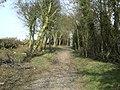 Hollowell-Creaton Road - geograph.org.uk - 1742909.jpg