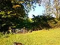 Hothersall, UK - panoramio (1).jpg