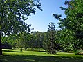 Hyde Park- Гайд-парк - panoramio.jpg